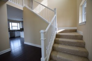 stairway with white railing and carpeted stairs
